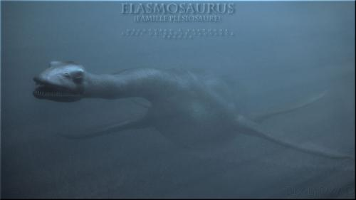 Élasmosaurus capturé sous l'eau par notre photographe, PYAP ;-)