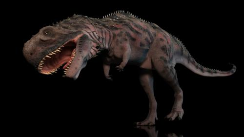 Majungasaurus (Madagascar)