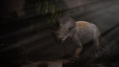 Triceratops en forêt primaire, capturé au flash ,'-D